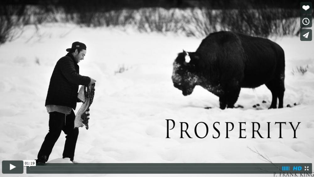 Varyk Kutnick - Prosperity