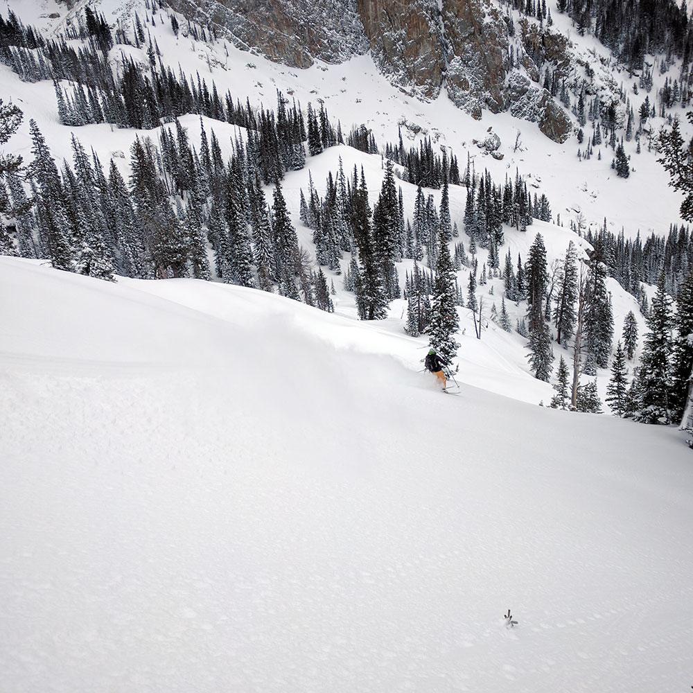 ali-zimmer-skiing-2